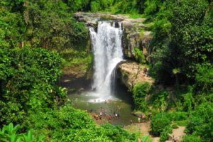 huge waterfall surrounded by forest with many people swimming