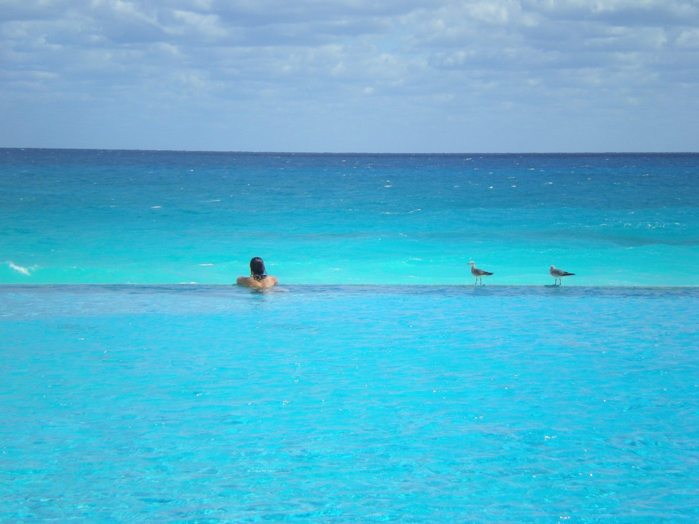 An infinite pool watching crystal clear water of Cancun