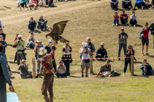 man holding and eagle at a presentation during the world nomad games