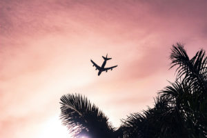Air plane passing above palm trees in a reddish colour sky